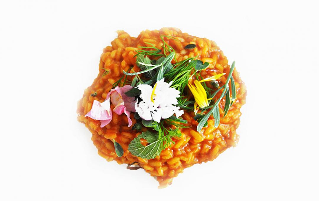 RED RISOTTO WITH AROMATIC HERBS AND FLOWERS - Zennaro for Valbona